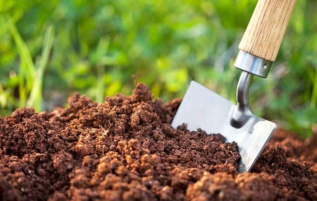 How-to-Add-Potassium-to-Garden-Soil